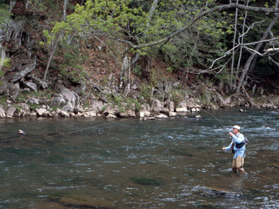 Stocked Trout Streams Fly Fishing Report - November 1, 2019