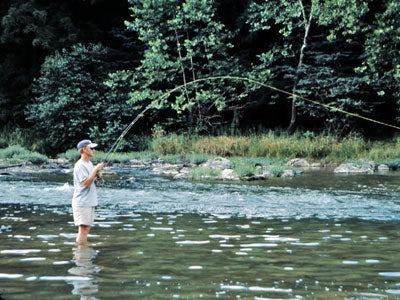 Stocked Trout Streams Fly Fishing Report - September 5, 2019