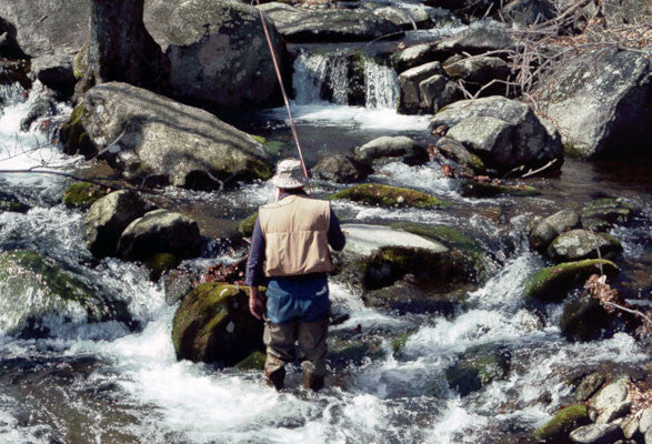 Mountain Trout Streams Fly Fishing Report- May 16, 2017
