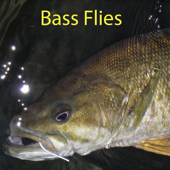 Bass Fly Fishing Flies