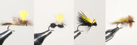 Mr. Rapidan Flies