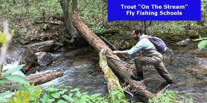 Learn to Fly Fish in our On the Stream Fly Fishing Schools for Trout