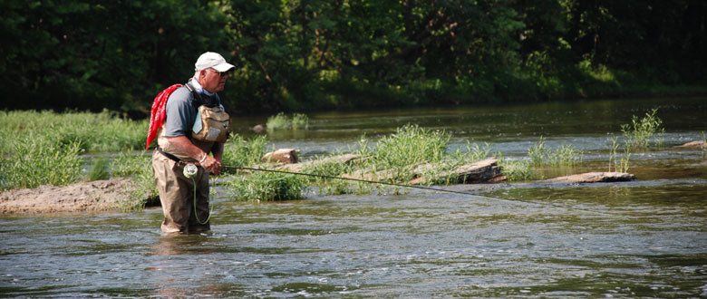 Fly Fishing on the Shenandoah River around Aquatic Grassbeds