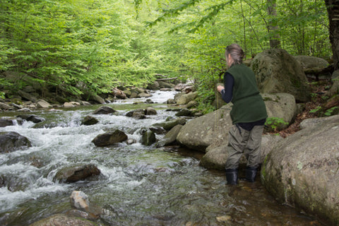 Trout Fly Fishing Guide Trip
