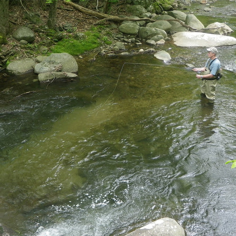 Virginia Brook Trout Fly Fishing Lessons - Murray's Fly Shop - Washington, DC, Maryland, North Carolina, West Virginia, Pennsylvania