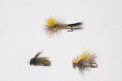 Mr. Rapidan Parachute, Murray's Olive Magic Caddis Pupa and Mr. Rapidan Olive Delta Wing Caddis