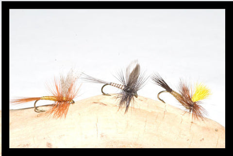 Murray's Professor Dry, Blue Quill Dry and Mr. Rapidan Parachute