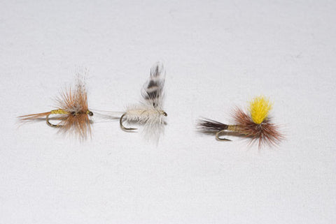 Mountain Trout Flies