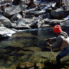 Trout Fishing in the Shenandoah National Park