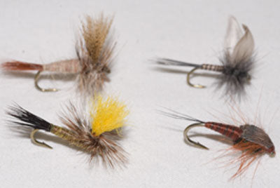 March Brown Dry, Mr. Rapidan Parachute Dry, Blue Quill Dry, March Brown Nymph