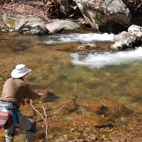 Mountain Trout On the Stream Fly Fishing Schools