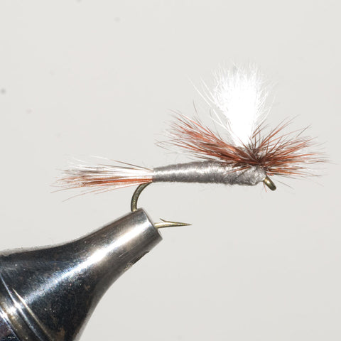 Adams Parachute Dry Fly