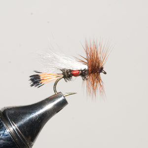 Royal Coachman Trude Dry Fly