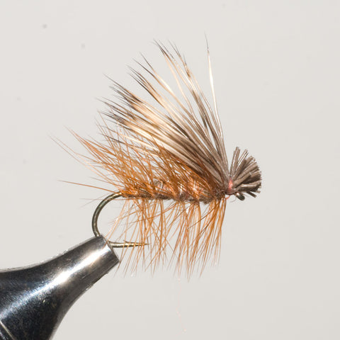 Brown Elk Hair Caddis