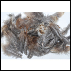 Ruffled Grouse Body Feathers