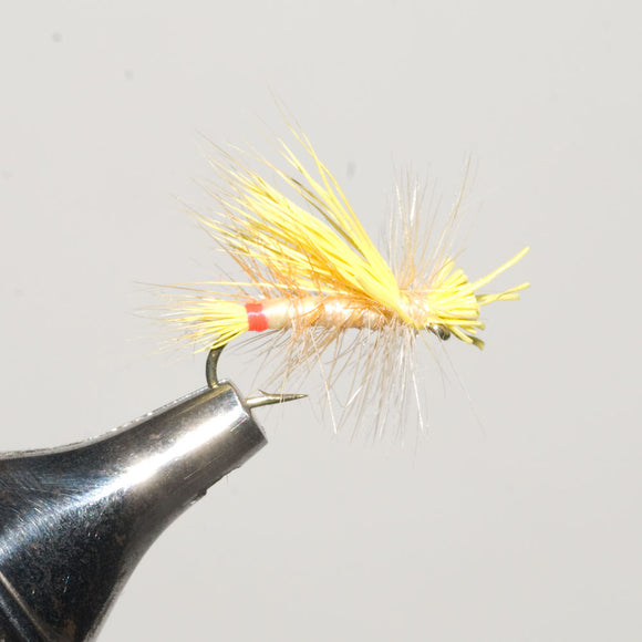Little Yellow Stonefly Dry