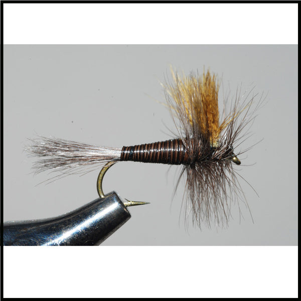 Quill Gordon Dry Murray S Fly Shop Murray S Fly Shop