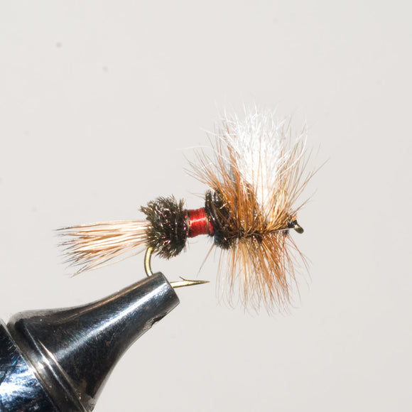 Royal Wulff Dry Fly