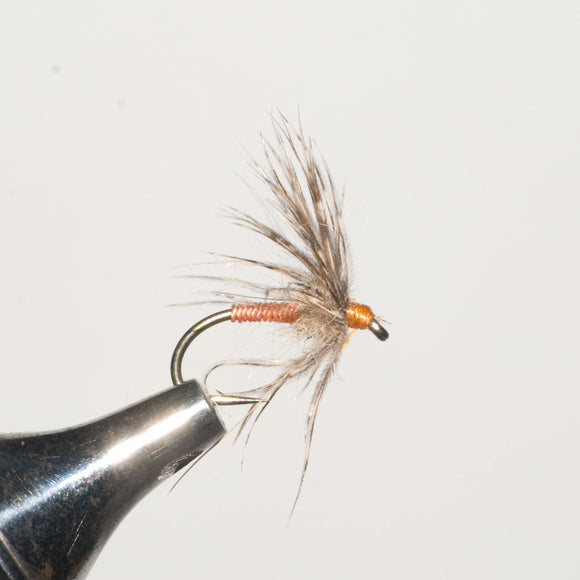 Shenandoah Soft Hackle Partridge Orange