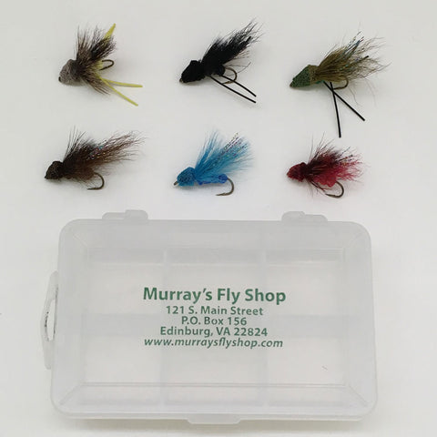 Summer Bass Dry Fly Special with Free Fly Box