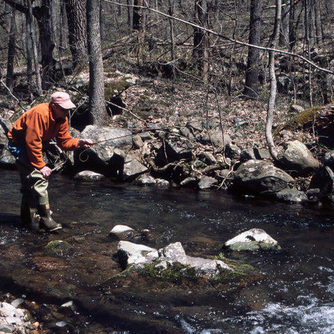 Trout Fishing in the Shenandoah National Park 101