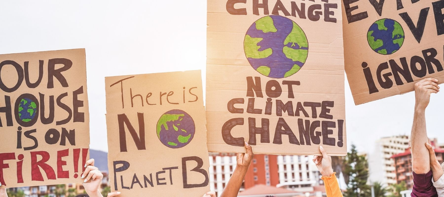 what we can do to push for systematic change in sustainable consumption production and environmental crisis