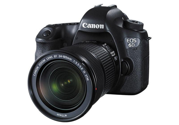 Canon EOS 6D with EF 24-105mm f/3.5-5.6 IS STM Kit
