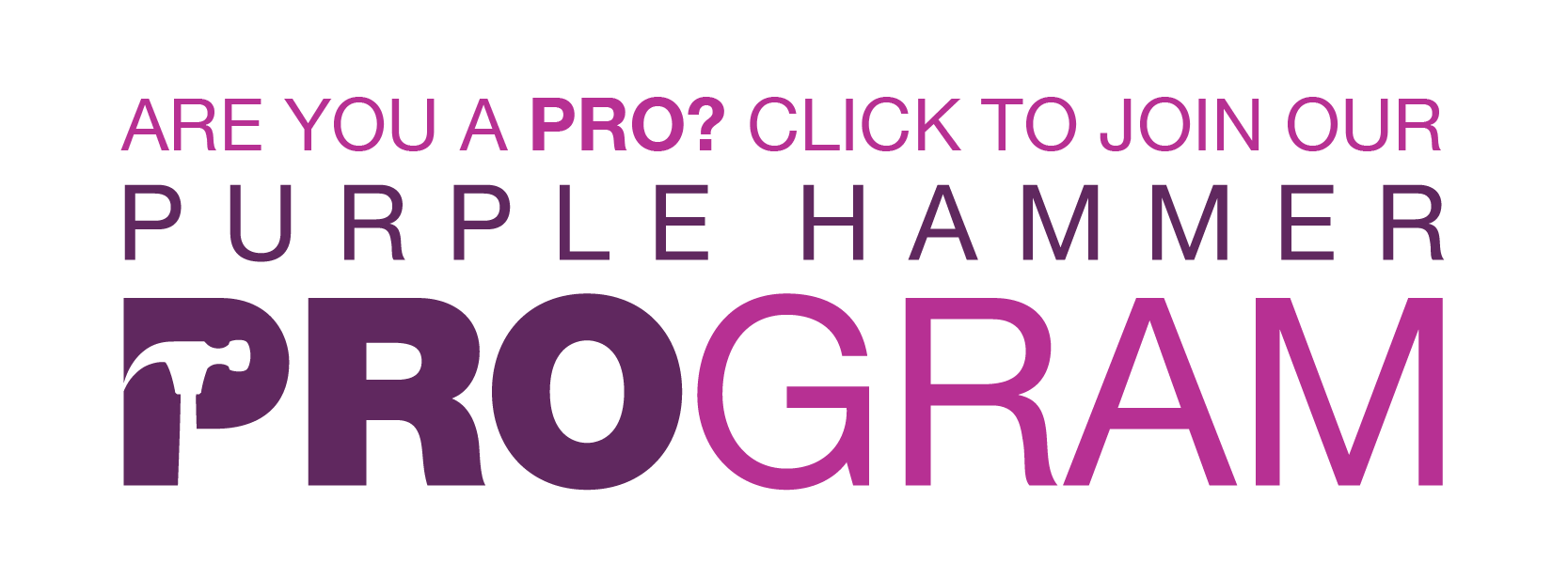 Purple Hammer Pro Program
