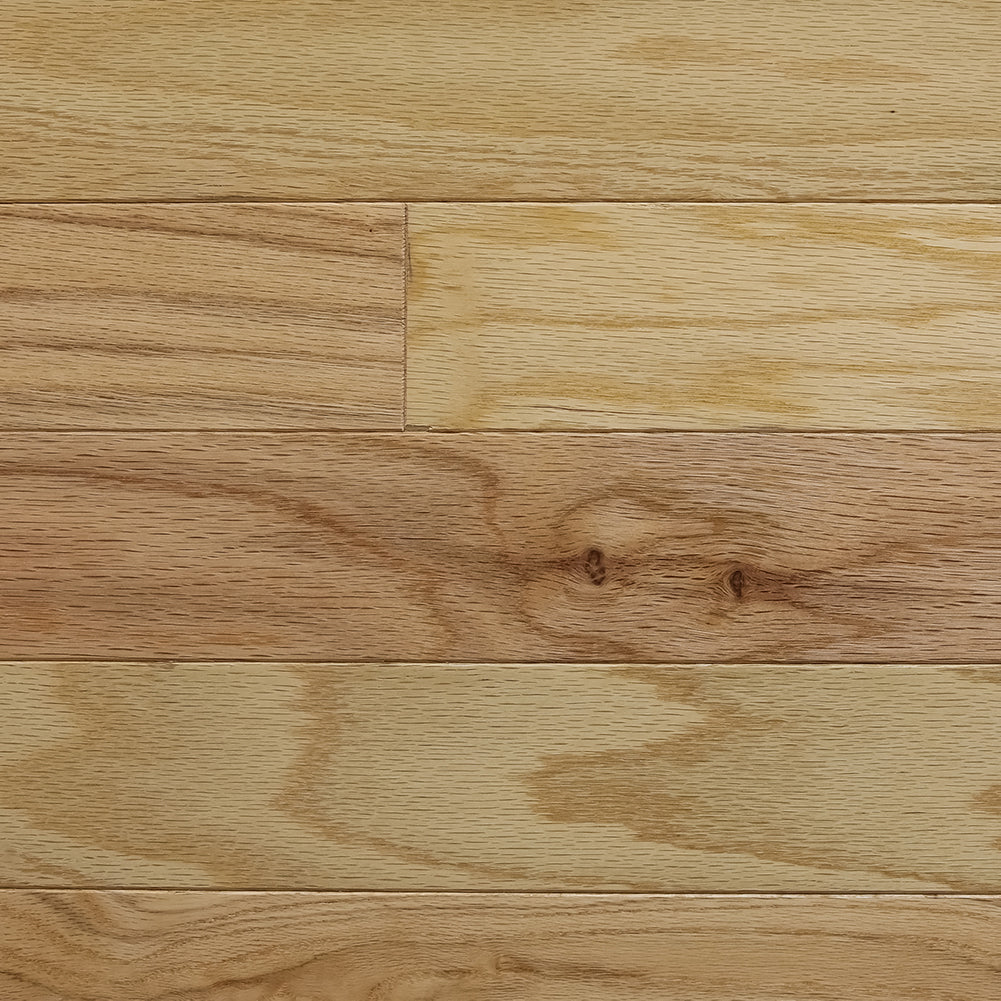 Nottoway Red Oak - Sample