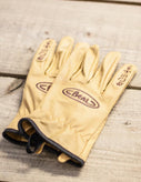 Beal - Assure Max Gloves