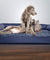 Orthopedic Quilted Sofa-Style Couch Pet Bed