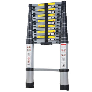 Multi Purpose Aluminum Extension Ladder