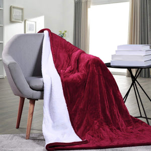 Electric Heated Throw Blanket with Auto Shut Off