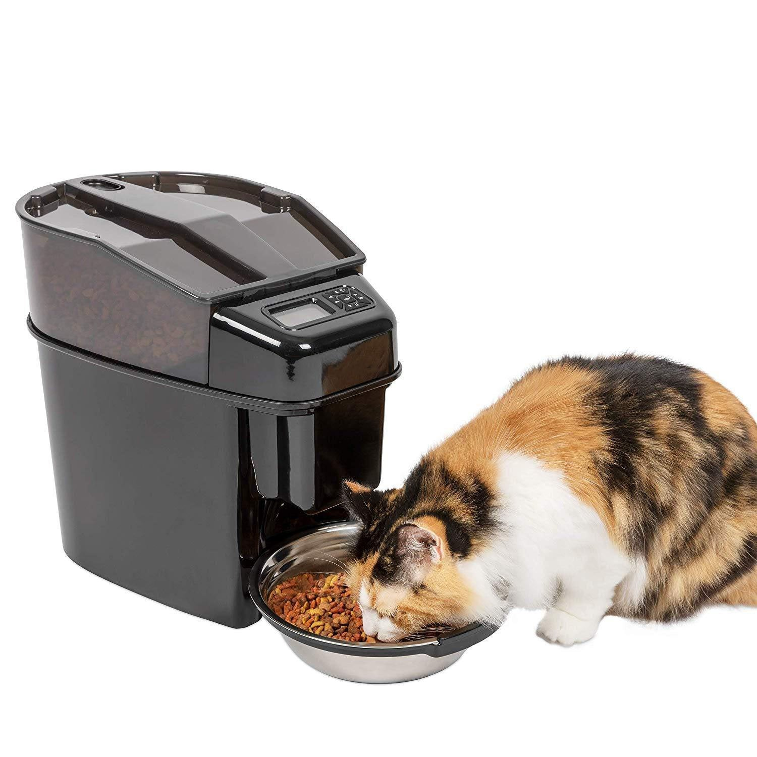 Automatic Cat and Dog Feeder With Stainless Steel Bow