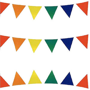 Multi Coloured Pennant Bunting 10m Long