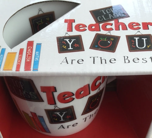 Teacher You Are The Best Mug