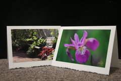 Garden Photography & Related