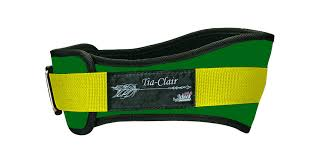 Schiek Tia-Clair Toomey Lifting Belt