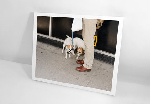 PRINT & BOOK: Brighton Picture Hunt, 2010 by Carmen & Alec Soth
