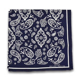 Pocket Square - Paisley