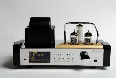 DR-100 Integrated Amplifier