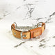 Natural + Cognac Brown - Fluxbury Leather Dog Collar (Standard) - Avaloncraftsg