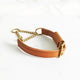 2cm Bloomsbury Leather Dog Collar - Avaloncraftsg