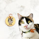 Paint Your Cat - 3cm Round Tag
