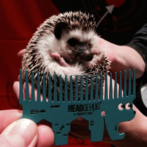 headgehog credit card tool