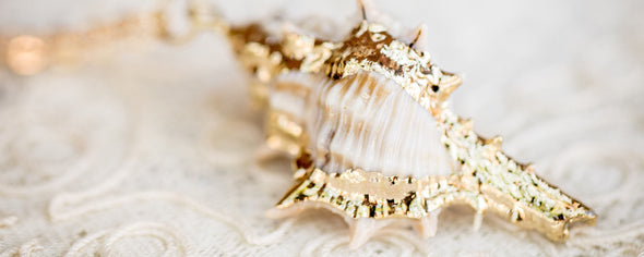 real conch shell necklace with gold accents