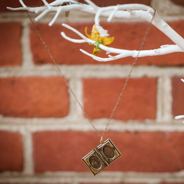 literature book locket hanging from tree, open