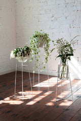 Pot Plant Stands - White