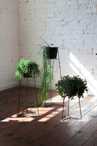 Pot Plant Stands - Black