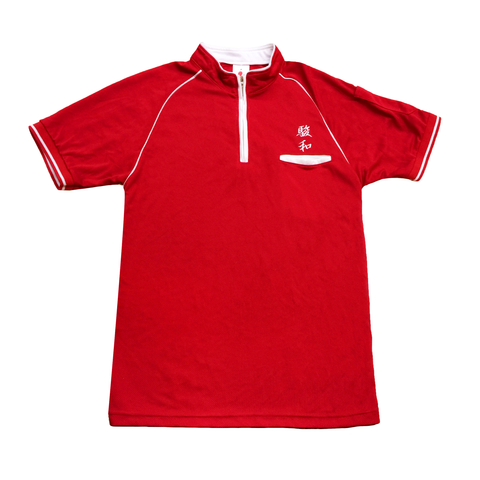 Custom embroidered logo mock neck polo tee with zip, raglan sleeve piping, hidden pocket and pen pocket